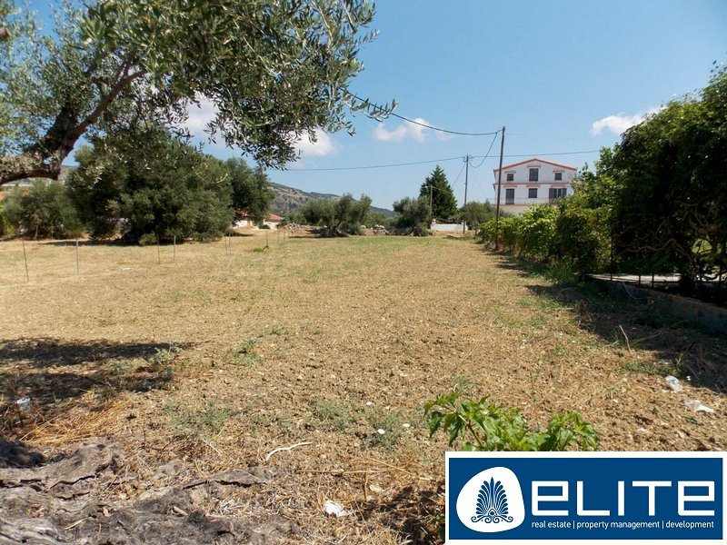 Plot for Sale - Paliki