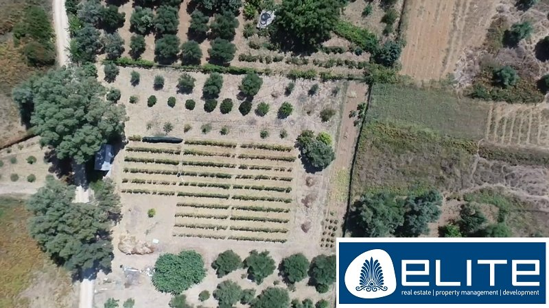 Rural plot of land for Sale - Elios-Pronnoi